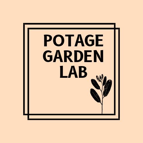 園芸療法コーディネーターKiyoのWEB